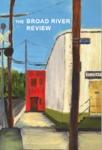 Volume 41 (2009) by C. V. Davis