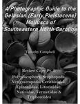 Waccamaw Mollusca Review Copy Pt. I: Polyplacophora, Scaphopoda, Vetigastropoda, Cerithoidea, Epitoniidae, Litorimidae, Naticidae, Vermetidae & Triphoroidea