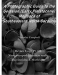 Lower Waccamaw Formation Review Copy Pt. III: Neogastropoda incertae sedis, Buccinoidea, & Muricidae by Timothy Campbell