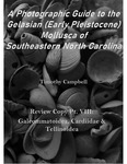 Waccamaw Mollusca Review Copy Pt. 8: Galeommatoidea, Cardidae, & Tellinoidea by Timothy Campbell