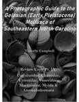Waccamaw Mollusca Review Copy Pt. IX: Ungulinidae, Chamidae, Cyrenidae, Veneridae, Mactroidea, Myida, & Anomalodesmata