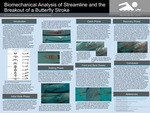 Biomechanical Analysis of Streamline and the Breakout of a Butterfly Stroke