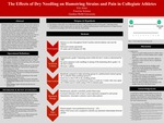 The Effects of Dry Needling on Hamstring Strains and Pain in Collegiate Athletes
