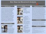 Box Step-Up Movement Analysis